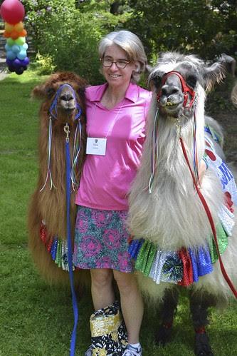 Therapy Llamas