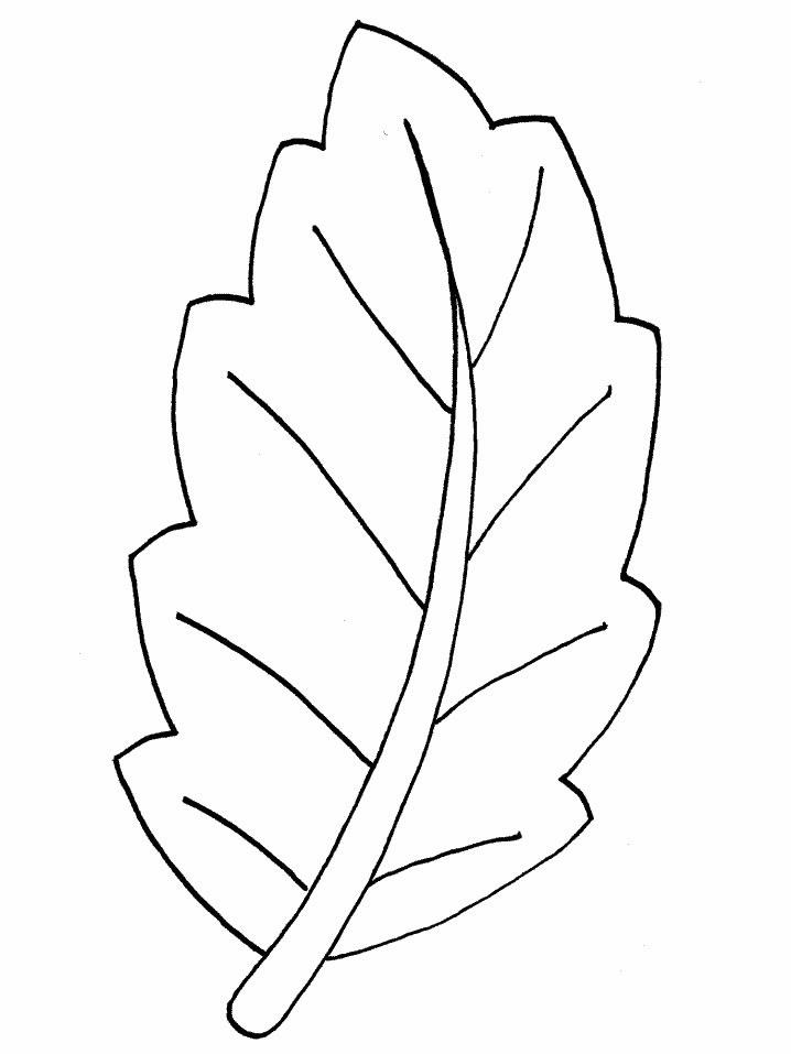 Dibujos Para Colorear De Hojas De Los árboles Plantillas Para