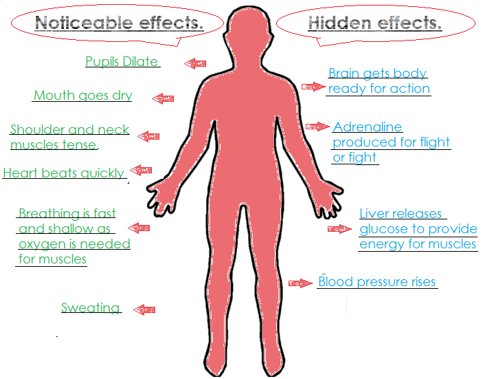 This is What Stress is Doing to Your Body Right Now ...