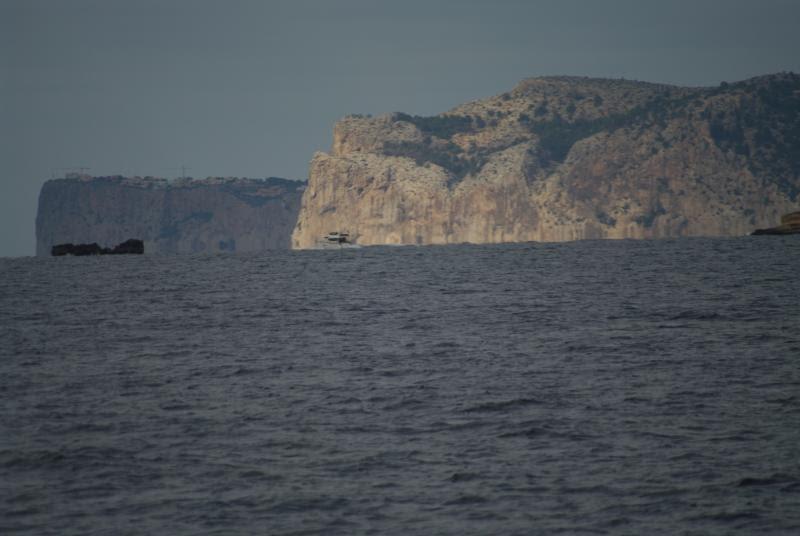 Wild Tigris - Palma cliffs