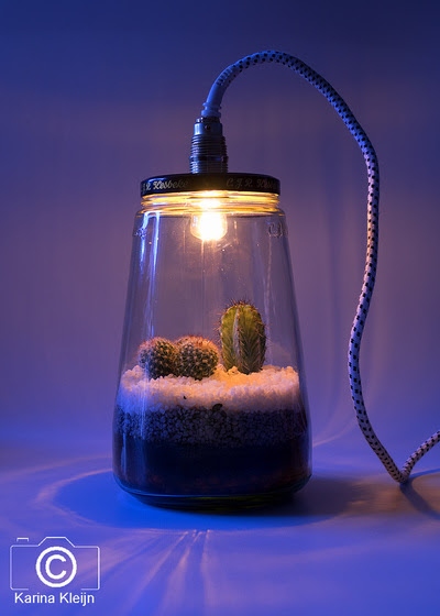 D.I.Y. (Do it yourself) lamp en tuintje