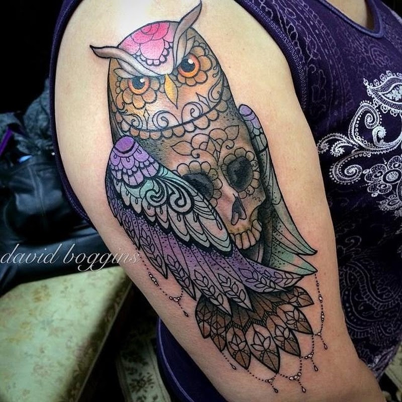 Coloured Owl Skull Tattoo On Half Sleeve Tattoos Book 65000