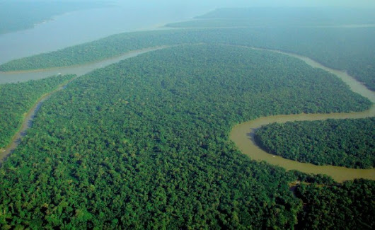 Global Civil Society to the Rescue of the Amazon | Inter Press Service