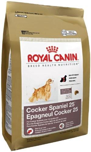 Cheap Big Bag Dog Food