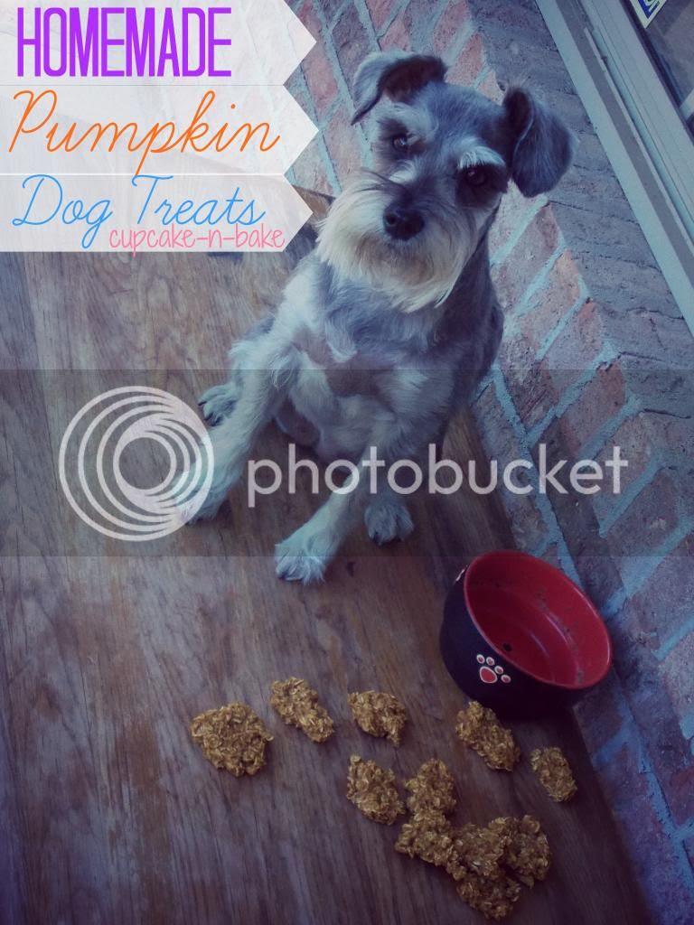 Homemade Pumpkin Dog Treats via @cupcake_n_bake #pumpkin #dogtreats #homemade
