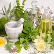 Natural Medicine | What 2 Do | Home