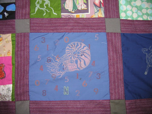 N is for numbers and Nautillus