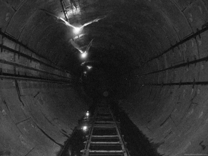 Russian subway horror 14