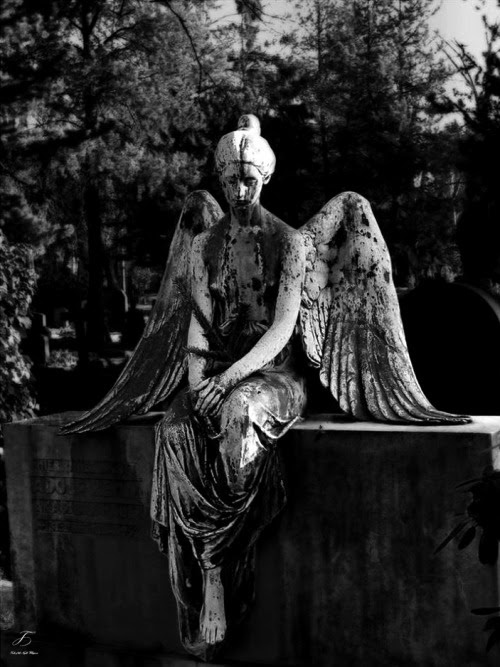 Image: sculpture myedits statue angel Stone angel tales-of-the-night ...