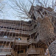 Inside the World's Biggest Tree House by Horace Burgess