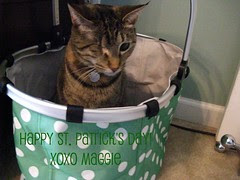 Maggie wishing all  her friends a Happy St. Patrick's Day