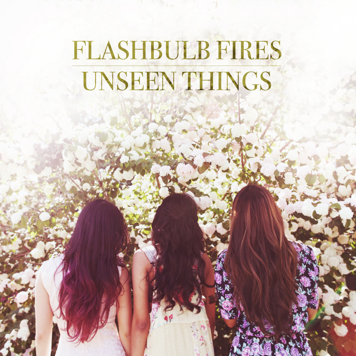 TRACK REVIEW: Unseen Things by Flashbulb Fires
