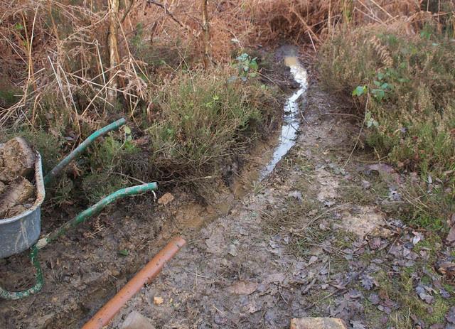 DSC_5487 drainage culvert