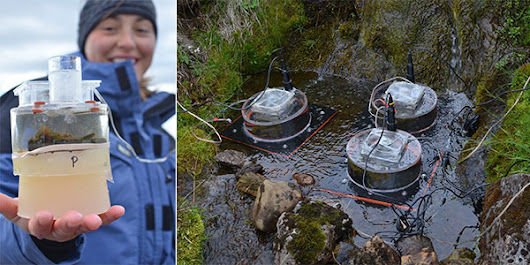 Iceland Stream Warming Study Provides a Preview of Climate Change