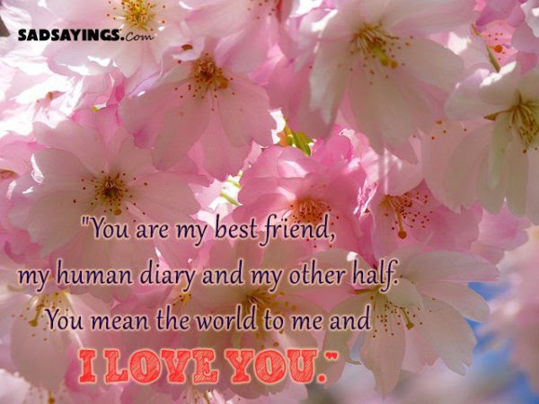 You Are My Best Friend My Human Diary And My Other Half You Mean