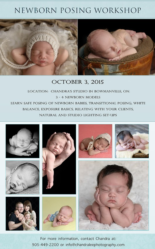 Newborn Posing Workshop with Chandra Lee Photography