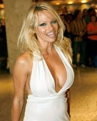 Pamela Anderson: I made not one dollar off of my sex