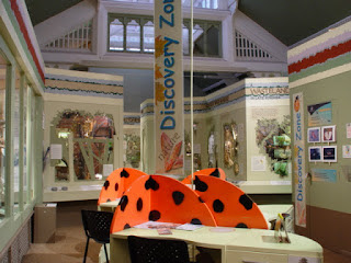 View of the Derbyshire Nature Gallery at Derby Museum & Art Gallery