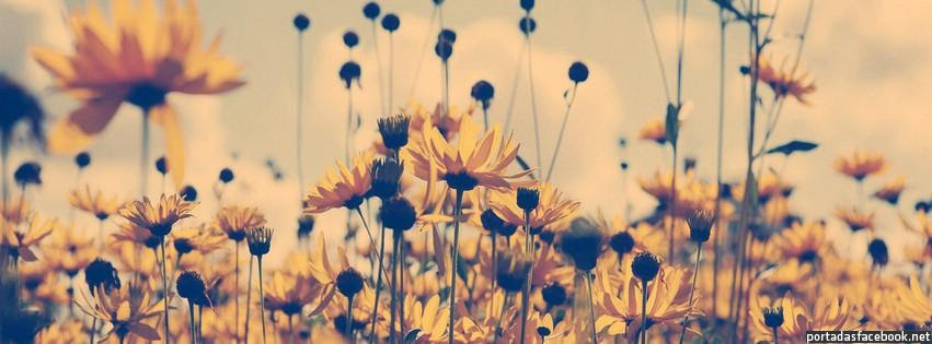 Flores De Portada Tumblr Imagui