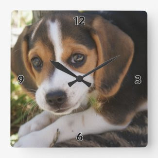 Beagle Baby Dog Square Wall Clock