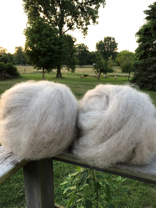 Border Leicester Roving 8 oz. | Mitten State Sheep & Wool-Natural Wool Products