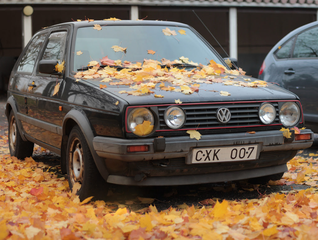 Parked in Autumn