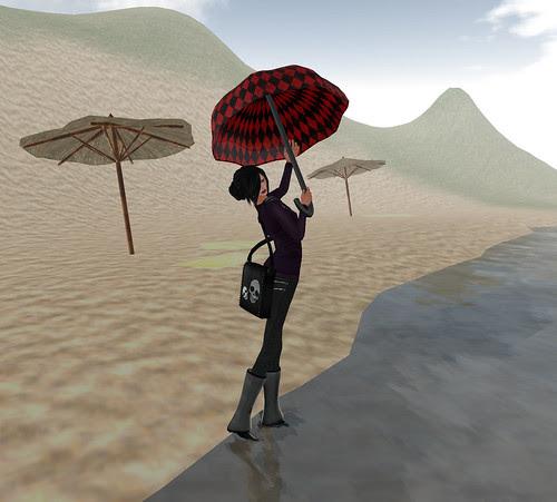 Umbrella bag and soma