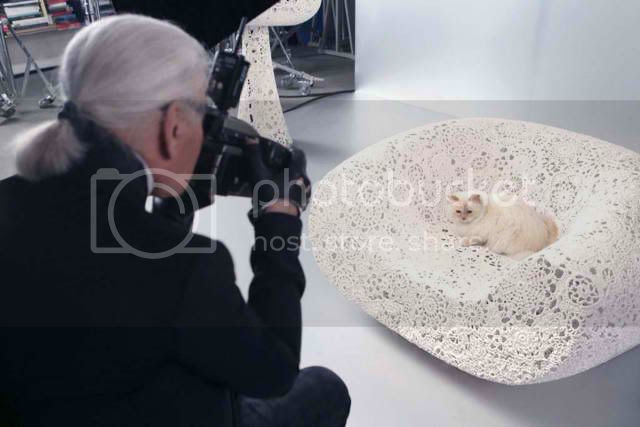 Cat Stars in Shupette by Karl Lagerfeld for Shu Uemura photo karl-lagerfeld-choupette-shuuemura_zps8de6b78c.jpg