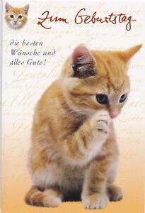 Alles Liebe Gute Zum Geburtstag Happy Birthday To
