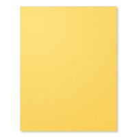 "Daffodil Delight 8-1/2"" X 11"" Card Stock"
