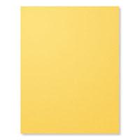 "Daffodil Delight 8-1/2"" X 11"" Card Stock"