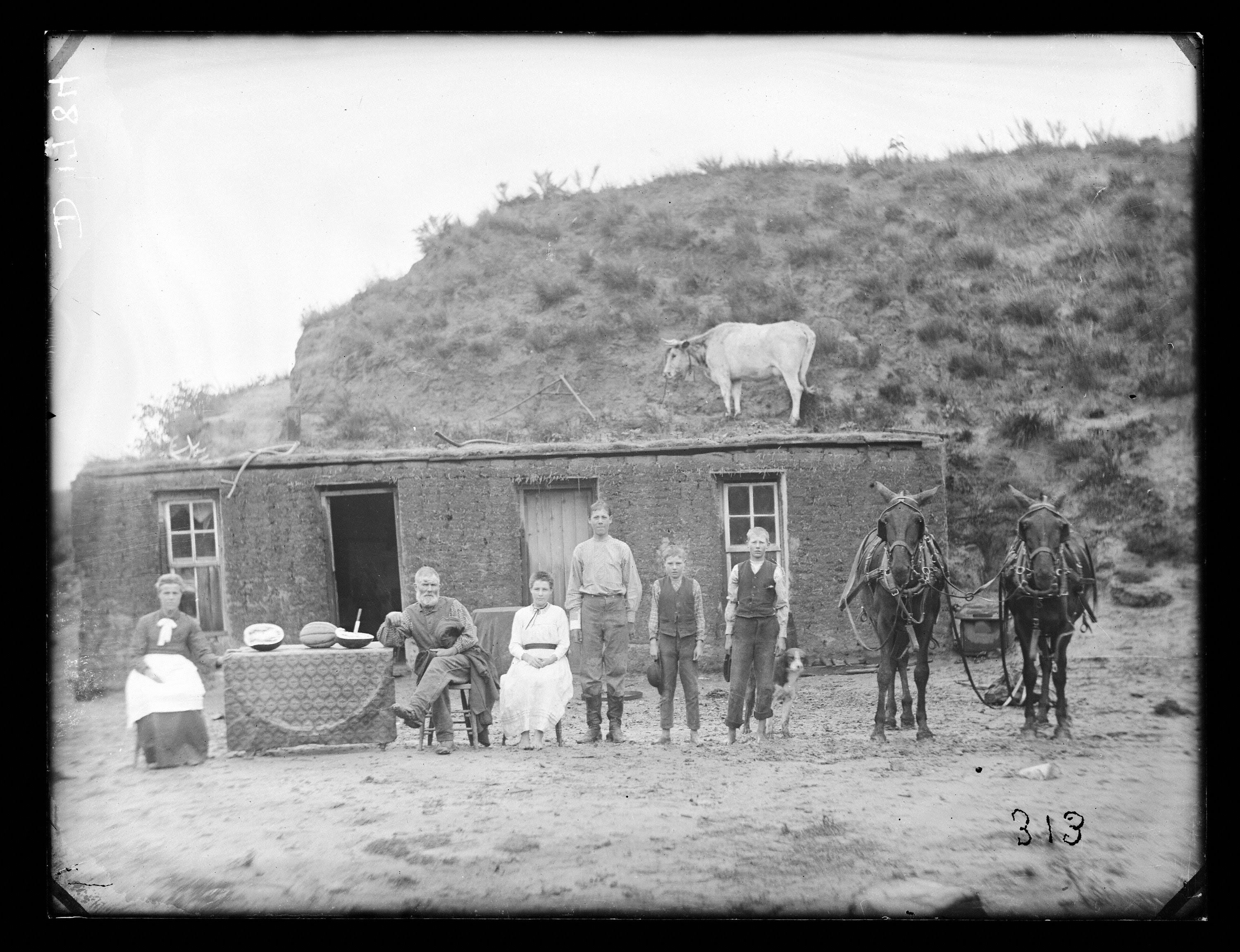 Old West sod house family