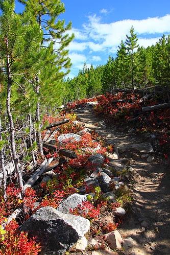 IMG_8237 Taggart Lake Trail, Grand Teton National Park