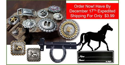 Hurry Order Now have By December 17Th with Expedited Shipping For Only $3.99 ⋆ Hill Saddlery