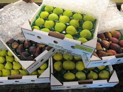 Many dozen fresh figs