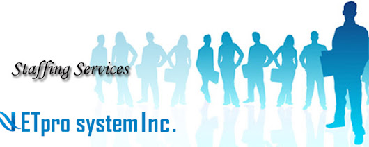Netpro System Inc | IT staffing and corporate training