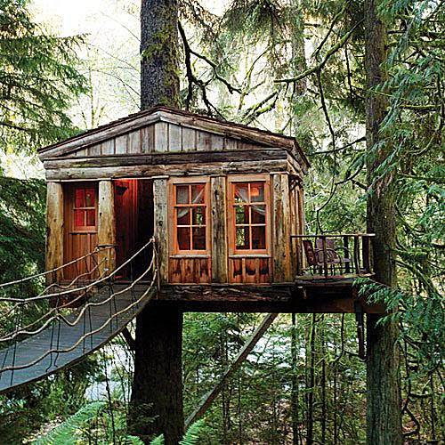 Tree House Point, Fall City, Washington  photo from sfgate