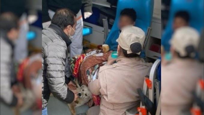 Perdido, un niño misionero sobrevivió al frío abrazado a dos perros