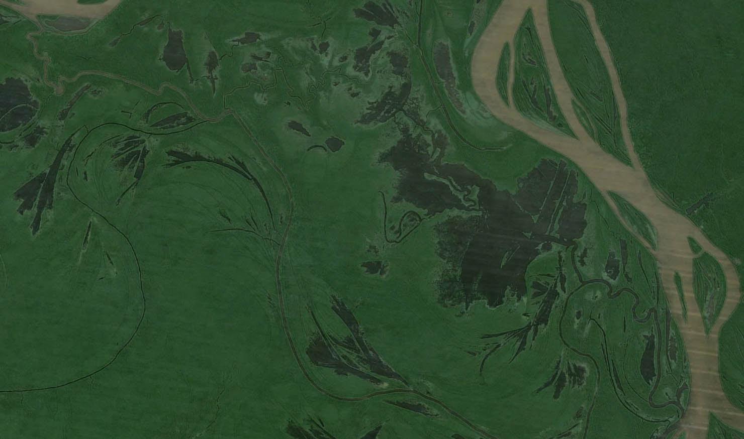 Reserva de desenvolvimento Sustentável Mamirauá