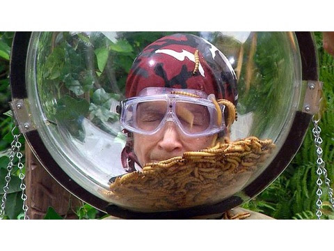 I'm a Celebrity... Get Me Out of Here! - I'm a Celebrity 2015: Helmets of Hell