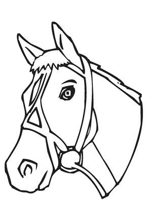 ausmalbild pferd pferdekopf ausmalbild - cartoon-bild