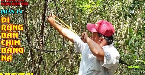 Đi Đánh Câu Vùng Biên Giới - P4 - Lội Rừng Bắn Chim Hái Trái Rừng