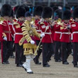 Gallery - Trooping the Colour - Ceremonial Events - The Household Division - Official site