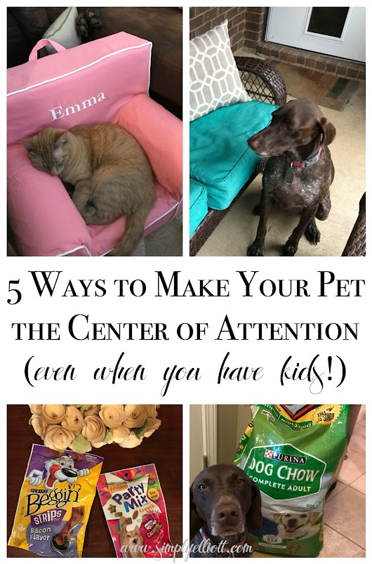 5 Ways to Make Your Pet the Center of Attention (Even When You Have Kids!) - Simply Elliott