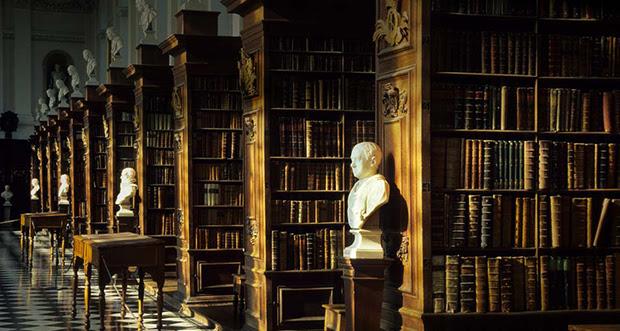 27 Amazing Interior Designs Of Public Libraries | LonerWolf