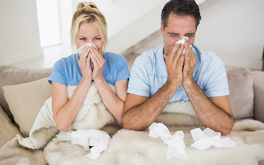 Fight the Awful Allergens in North Carolina With These Tips
