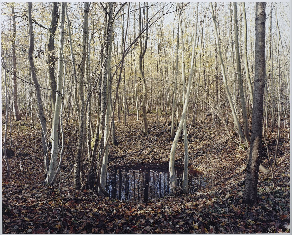 Haunting Photos of the German Countryside Reveal Scars Left from WWII Bombs WWII war landscapes