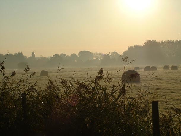 Matin brumeux, gelée blanche, de OliBac (Flickr)