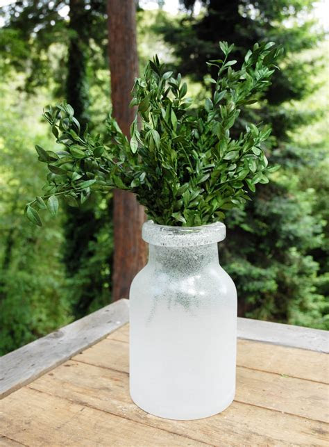 Preserved Boxwood Bundle in Natural Green 5oz.