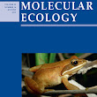 Cheaters sometimes prosper: targeted worker reproduction in honeybee (Apis mellifera) colonies during swarming - Holmes - 2013 - Molecular Ecology - Wiley Online Library